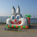 Click here to Browse Bunny Bounce House Photos